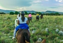 harties horse trail safaris-402